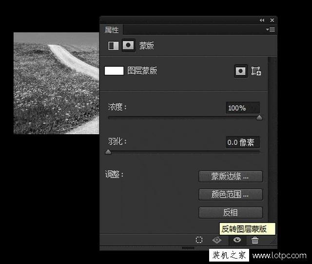 教你如何使用photoshop软件将照片局部去色 Photoshop 第4张