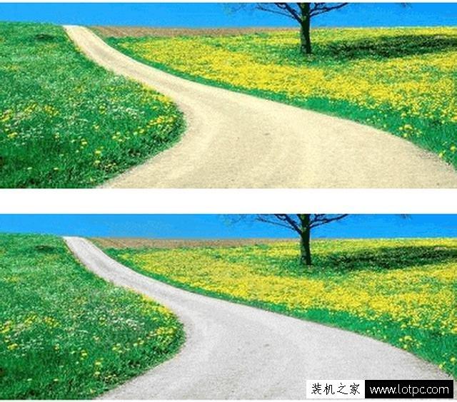 教你如何使用photoshop软件将照片局部去色 Photoshop 第7张